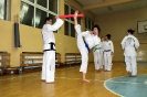 Grodków Egzamin Cup Juniorów i Seniorów 08.11.2013r