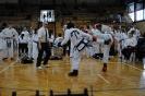 Mistrzostwa Polski Taekwon-do Brzeg Dolny 21.04.2013r