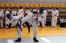 Mistrzostwa Polski Taekwon-do Krotoszyn. 09.04.2017 Junior-Senior