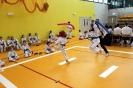 Mistrzostwa Polski Taekwon-do Krotoszyn. 09.04.2017 Młodzik._12