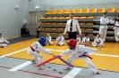 Mistrzostwa Polski Taekwon-do Krotoszyn. 09.04.2017 Młodzik._14