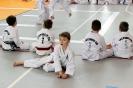 Mistrzostwa Polski Taekwon-do Krotoszyn. 09.04.2017 Młodzik._18