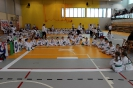 Mistrzostwa Polski Taekwon-do Krotoszyn. 09.04.2017 Młodzik._4