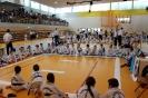 Mistrzostwa Polski Taekwon-do Krotoszyn. 09.04.2017 Młodzik._6