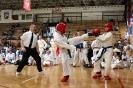 Mistrzostwa Polskiej Federacji Taekwon-do Brzeg Dolny 12.04.2014r