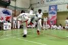 Mistrzostwa Taekwon-do Ziemi Łódzkiej Wieluń 05.01.2014r