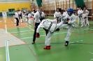 Mistrzostwa Wielkopolski TKD 18.03.2018r  Kadet-Junior-Senior