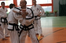 Seminarium Taekwon-do Oborniki Śląskie 13.06.2015r
