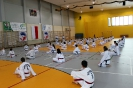 Szkolenie POLMASTERS  Krotoszyn 14.05.2017_15