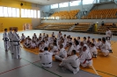 Szkolenie POLMASTERS  Krotoszyn 14.05.2017_6