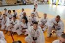 Szkolenie POLMASTERS  Krotoszyn 14.05.2017_9